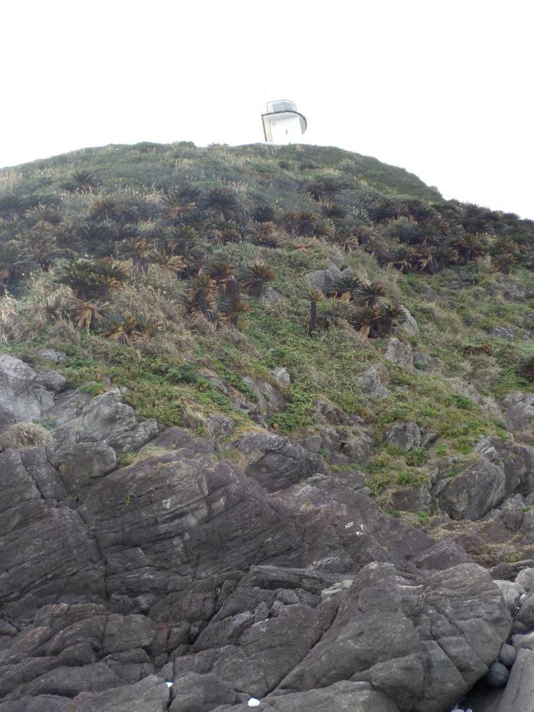 ふもとから見上げる灯台