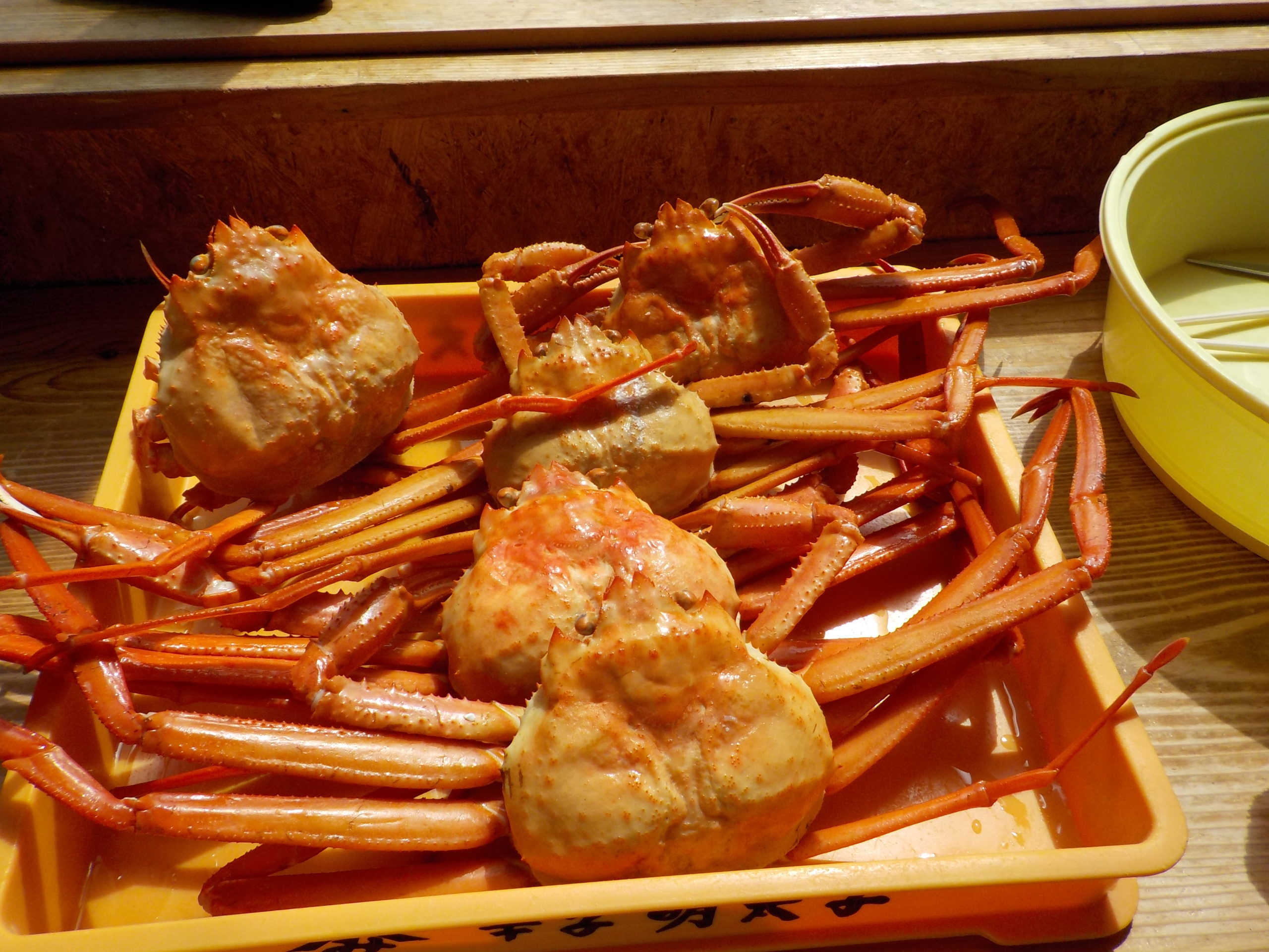 Crabs-in-the-Park-named-Marine-Dream-Nou