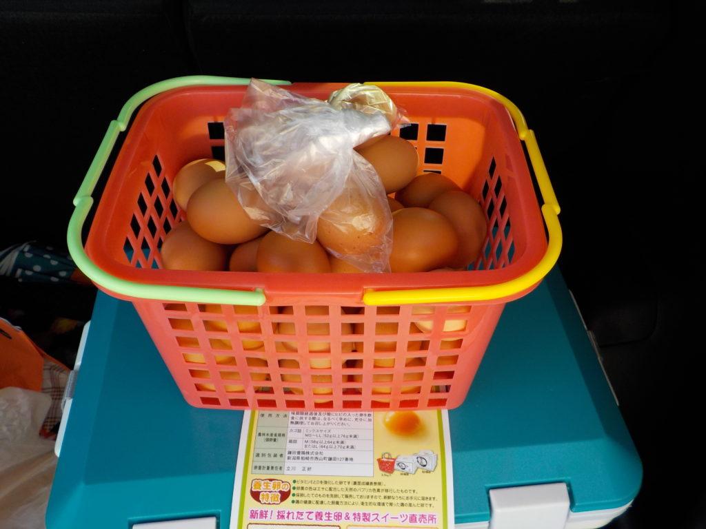 鎌田養鶏さんの卵1カゴ