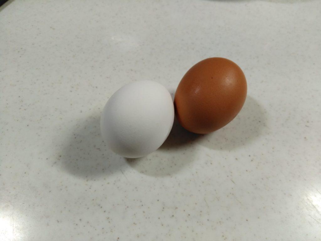 キッチンに置かれた普通の卵と養生卵
