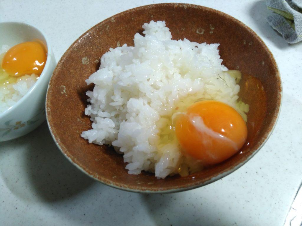 養生卵の卵かけご飯