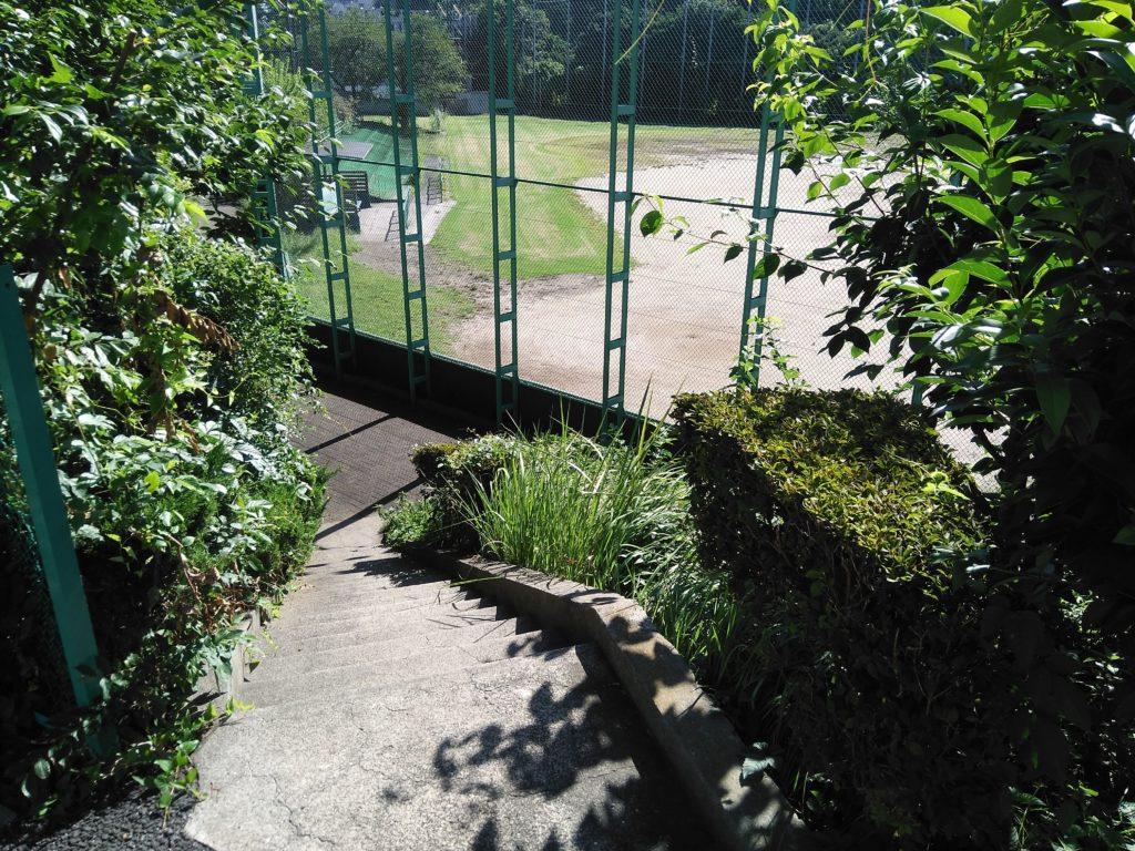 野球場脇の階段