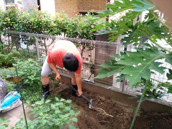 土掘り起こし