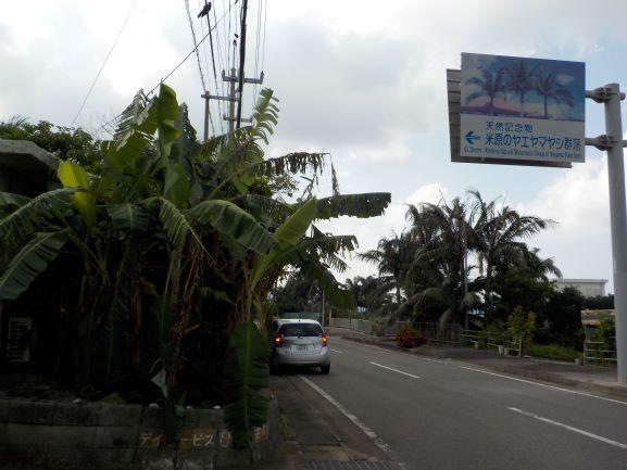 ヤエヤマヤシ群落案内標識