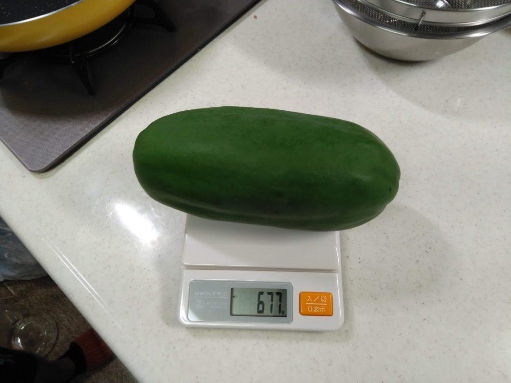 パパイヤの重さ677g